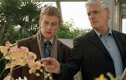 Tatort - Der Name der Orchidee (TV)